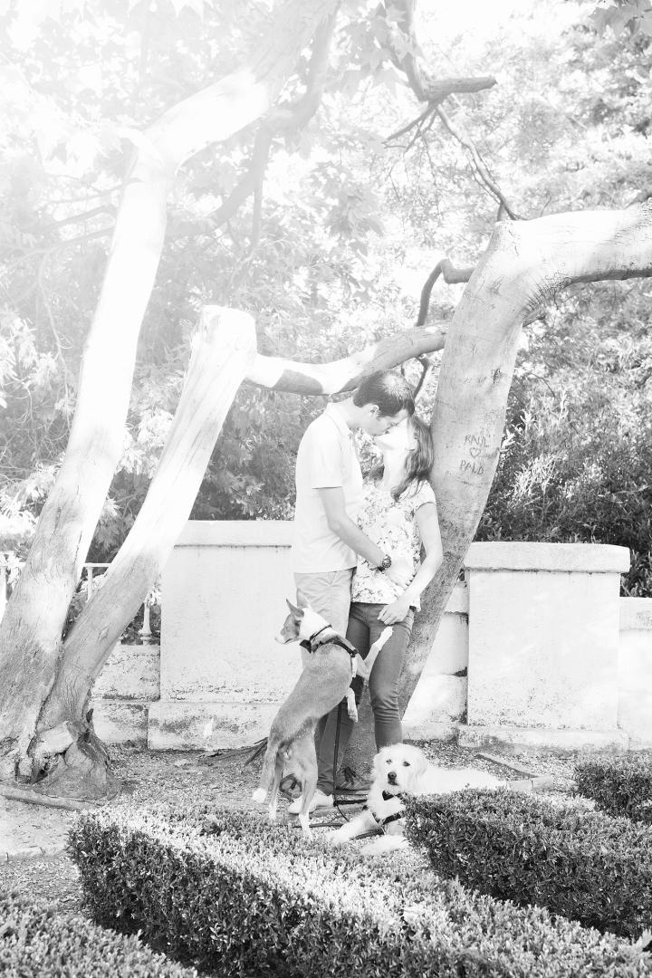Preboda Ainhoa y Arturo_10